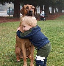 A little boy and full grown Ridgeback